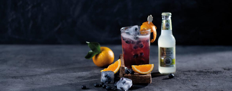 Alkoholfreier Longdrink mit Tonic Water