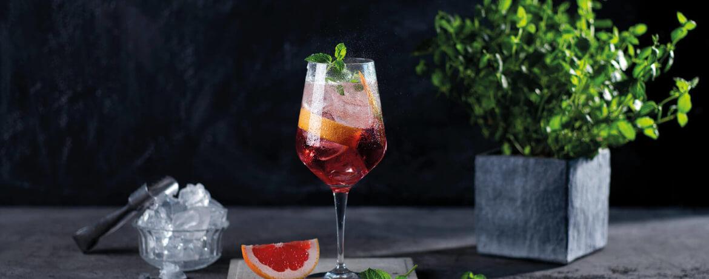 Longdrink mit Schwarzwald Sommer Gin Refreshed