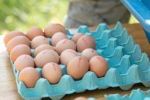 Was bedeutet die Klassifizierung auf den Eiern?